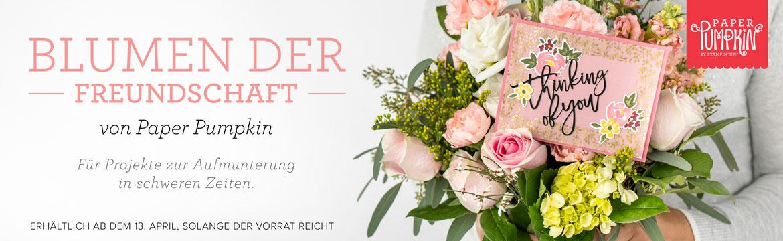 """Paper Pumpkin Set """"Blumen der Freundschaft"""" 1"""